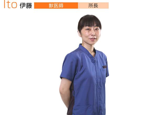 伊藤【獣医師】所長
